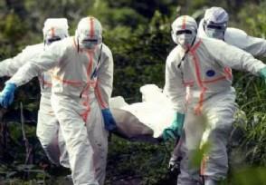 美疫情至今已死多少人揭美国疫情最新状况