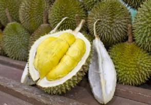 榴莲成中国进口量最大的水果 总量超57万吨