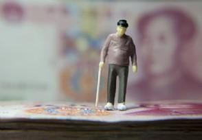 查询养老保险个人账户缴费明细个人缴费金额如何查