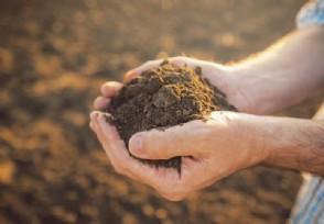 工信部谈稀土为何只卖出土的价格具体原因是什么