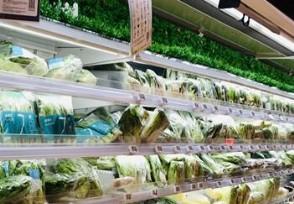 全球食品价格连续9个月上涨这两种品类涨幅最大