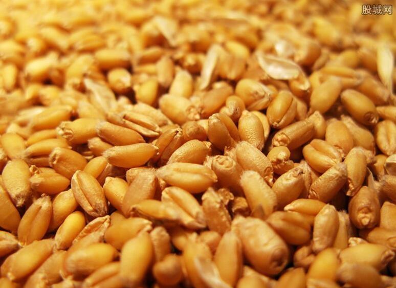 全球粮食价格上涨