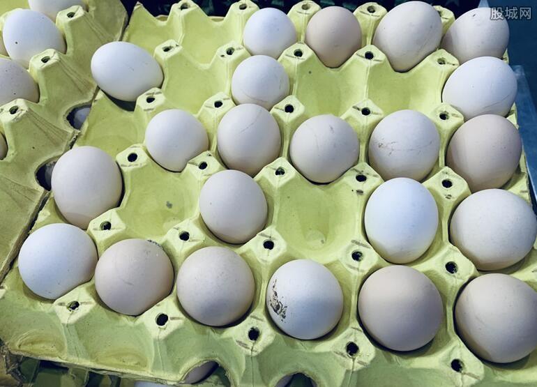 媒体谈鸡蛋涨价空间 听了一个让人放心的好消息