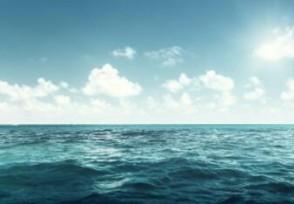 日本东电称排污入海最经济实惠花费这么低