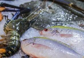 韩国超市继续停售日产海鲜担心产品安全性