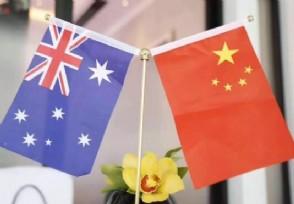 中澳战略经济对话活动为什么暂停 原因揭晓
