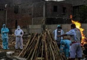 美媒:印度进入新冠死亡高峰期单日创历史新高
