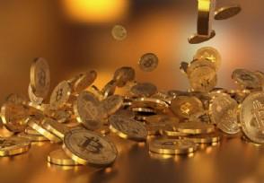 柴犬币值得投资吗 在哪里才能买得到?