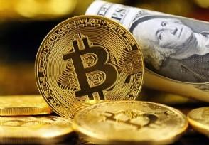 主流数字货币有哪些除了比特币还有这两种
