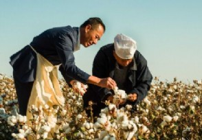 优衣库被指使用新疆棉花遭美国拦截 看事件最新消息