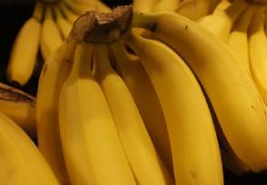 官方回应苹果蕉运输收费 云南收费站绿通事件后续