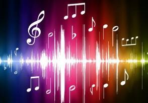 目前不收费的音乐软件有哪些这些平台下载歌曲不收费