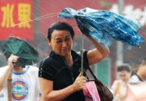 郑州市暴雨多少人被问责 仅是天灾还是存在着应急不力