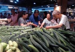 到底是什么原因引起蔬菜涨价的?揭价格最新行情走势