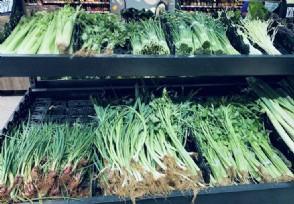 一餐蔬菜花近30元啥原因主要受多重因素�е�