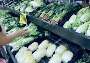 蔬菜价格高位运行态势仍会持续和三大原因有关