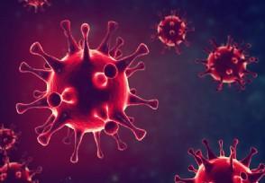 北京新增5例确诊2例无症状疫情最新形势怎么样?